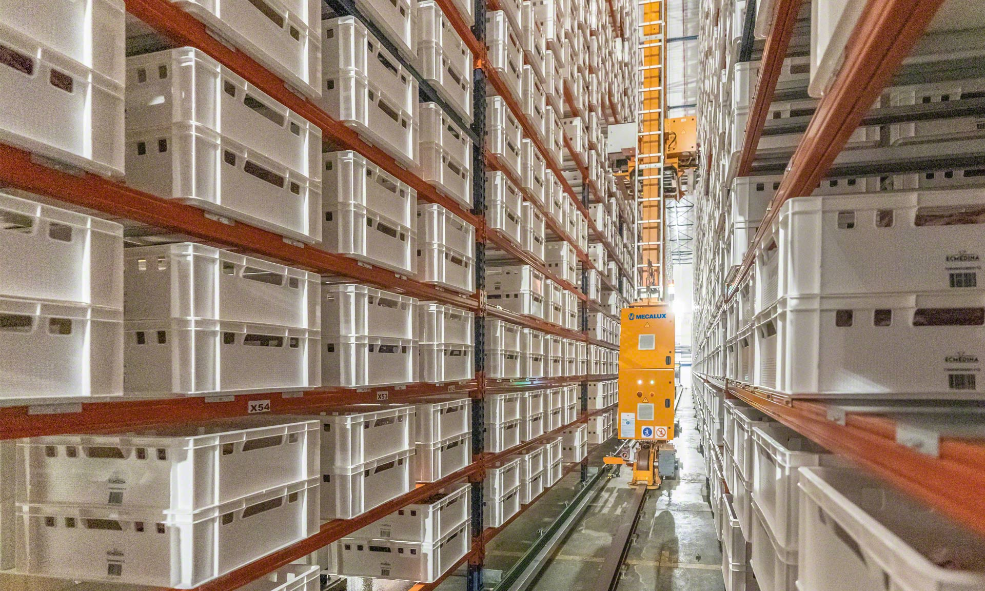 Elaborados Cárnicos Medina: 30 milhões de quilos / ano de vitela em um buffer automático